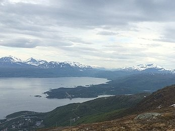 image_manager__news_pic_narvik_news