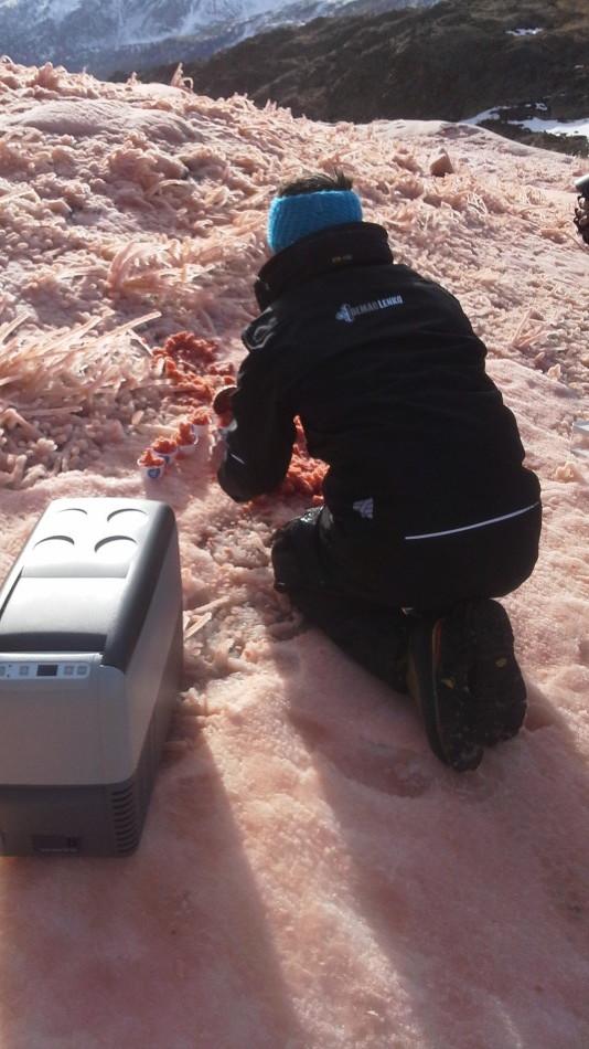 Rosa Pisten am Schnalstaler Gletscher